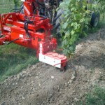 inter row rotary harrow